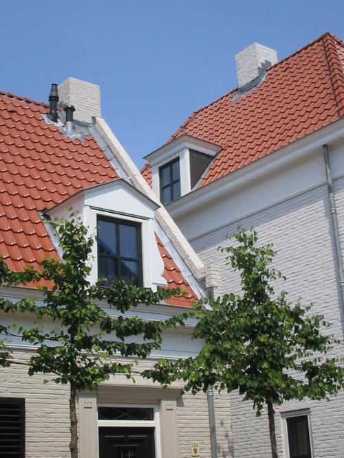 Geveke Bouw Heerenveen bomen